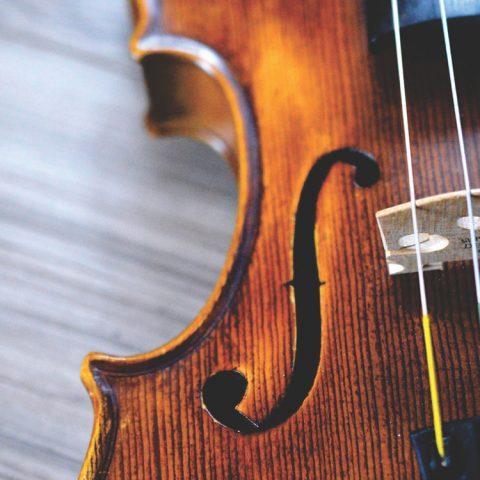 Närbild på fiol