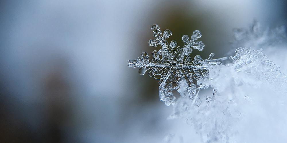 Musik i vintertid med B Singers och Trio Reo